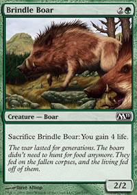 Brindle Boar - Magic 2011