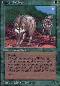 Timber Wolves - Limited (Alpha)
