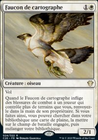 Faucon de cartographe -
