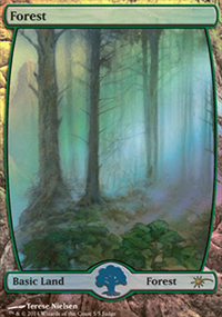 Forest - Judge Gift