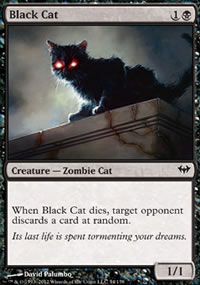 Black Cat - Dark Ascension