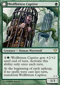 Wolfbitten Captive - Dark Ascension