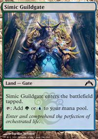 Simic Guildgate - Gatecrash