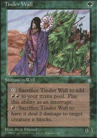Tinder Wall - Ice Age