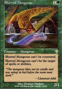 Blurred Mongoose - Invasion