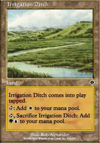 Irrigation Ditch - Invasion