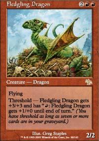 Fledgling Dragon - Judgment
