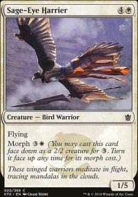 Sage-Eye Harrier - Khans of Tarkir