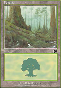 Forest 2 - Mercadian Masques
