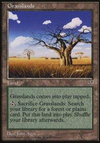 Grasslands - Mirage