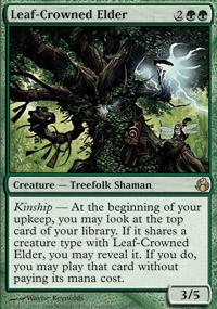 Leaf-Crowned Elder - Morningtide