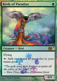 Birds of Paradise - Miscellaneous Promos