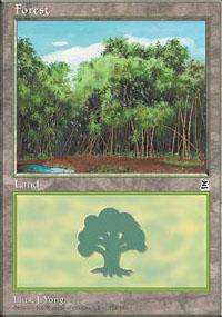 Forest 1 - Portal Three Kingdoms