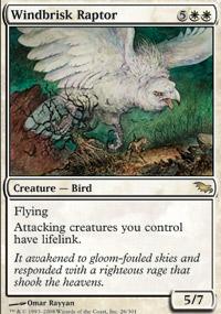 Windbrisk Raptor - Shadowmoor