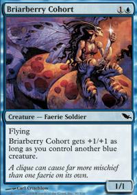 Briarberry Cohort - Shadowmoor