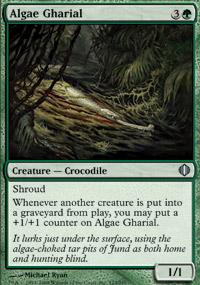 Algae Gharial - Shards of Alara