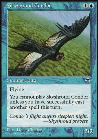 Skyshroud Condor - Tempest