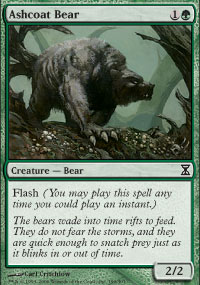 Ashcoat Bear - Time Spiral