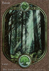 Forest - Unglued