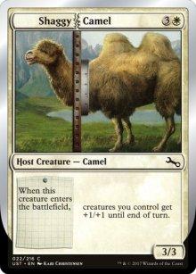Shaggy Camel - Unstable