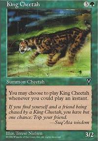 King Cheetah - Visions