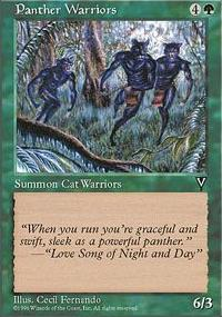 Panther Warriors - Visions
