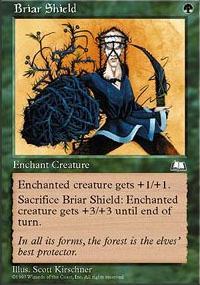 Briar Shield - Weatherlight