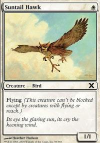 Suntail Hawk - 10th Edition